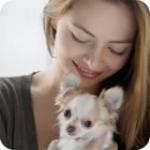 Eliminating Pet Odors