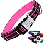 Black Rhino – Classic Striped Adjustable Dog Collar for Small Medium Large Breeds | 3m Reflective Threading | 4 Bright Colors – Matching Leashes Sold Separately (Pink Striped, Large)