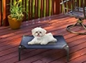 """Elevated Pet Bed-Portable Raised Cot-Style Bed W/ Non-Slip Feet, 24.5""""x 18.5""""x 7"""" for Dogs, Cats, and Small Pets-Indoor/Outdoor Use by Petmaker (Blue), 80-PET6083"""