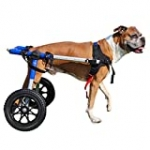 Walkin' Wheels Dog Wheelchair – for Med/Large Dogs 50-69 Pounds – Veterinarian Approved – Dog Wheelchair for Back Legs