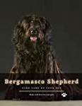 Bergamasco Shepherd: Choose best dog breeds for you