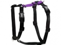 Blue-9 Buckle-Neck Balance Harness, Fully Customizable Fit No-Pull Harness, Ideal for Dog Training and Obedience, Made in The USA, Purple, Medium/Large