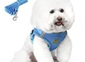Dog Harnesses for Small Dogs,Step-in Medium Dog Harness,All Weather Mesh with Leash 3M Reflective Pet Dog Vest